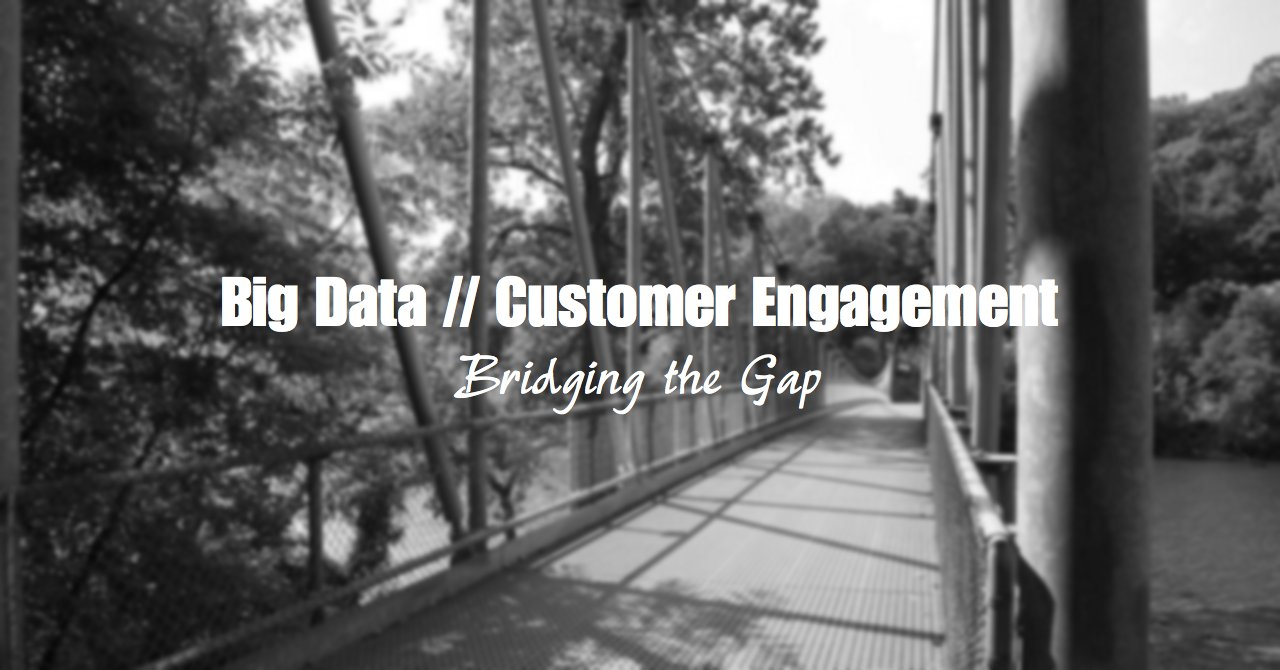 The Big Data & Customer Engagement Divide